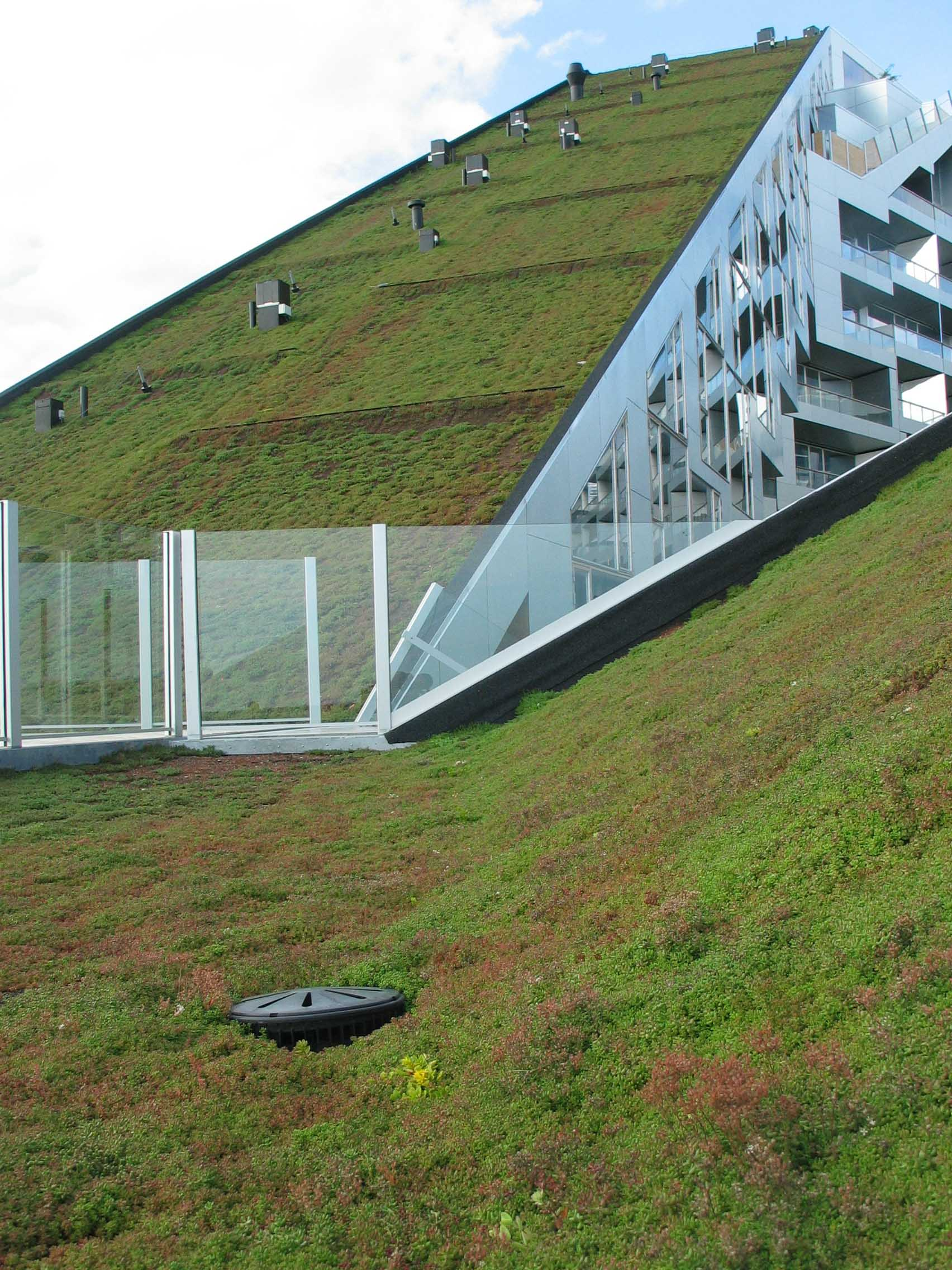big s 8 house wins the 2010 scandinavian green roof award