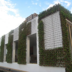 Greenhouse Sydney: could this be the greenest building on Earth?