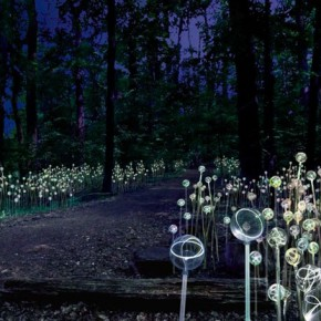 UK light artist Bruce Munro in Longwood Gardens