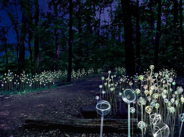 Brunce Munro light artist in Longwood Gardens