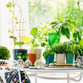Flower pots by Erika Pekkari for Svenskt Tenn