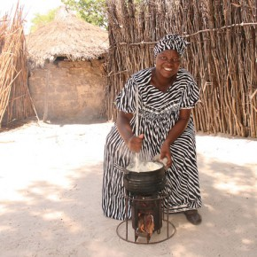EzyStove: Revolutionary wood-burning stove for developing countries