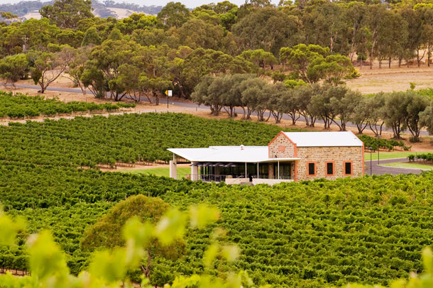 A view of the Angove wine company in Australia