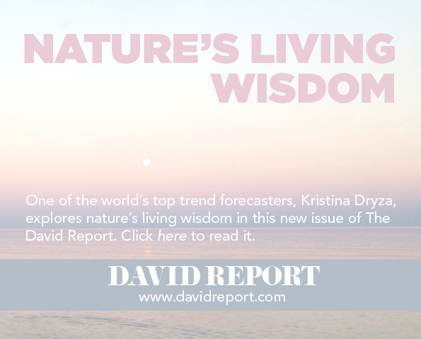 Nature's living wisdom by Kristina Dryza
